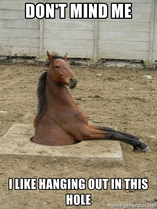 Hole Horse - Don't mind me i like hanging out in this hole
