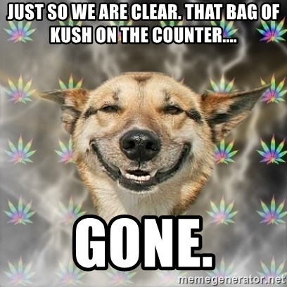 Stoner Dog - Just so we are clear. that bag of kush on the counter.... gone.