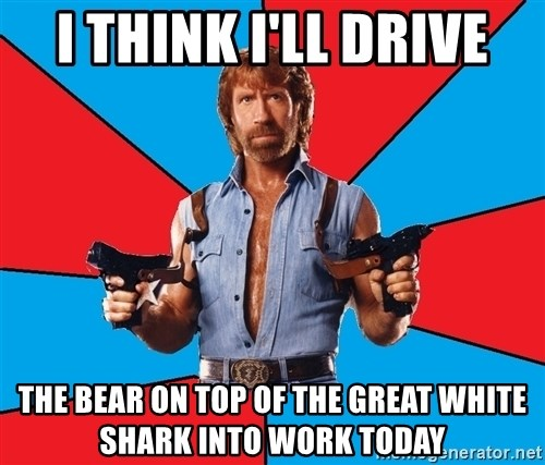 Chuck Norris  - I think I'll drive the bear on top of the great white shark into work today