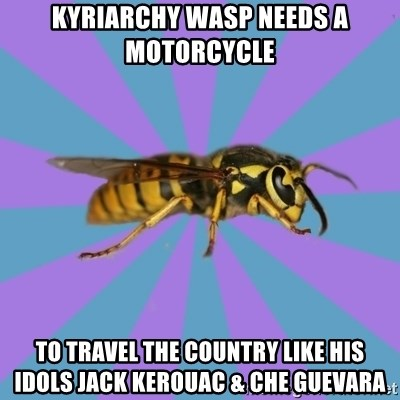 kyriarchy wasp - kyriarchy wasp needs a motorcycle To travel the Country like his idols Jack Kerouac & Che Guevara