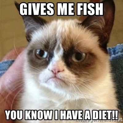 Grumpy Cat  - GIVES ME FISH YOU KNOW I HAVE A DIET!!