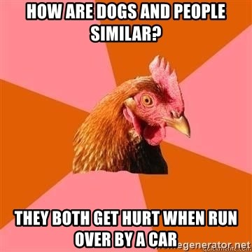 Antijokechicken - how are dogs and people similar? they both get hurt when run over by a car