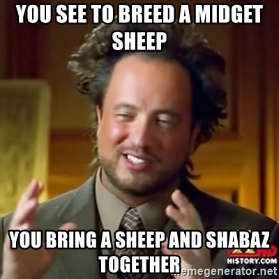 ancient alien guy - YOU SEE TO BREED A MIDGET SHEEP  YOU BRING A SHEEP AND SHABAZ TOGETHER
