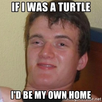 Stoner Stanley - If i was a turtle i'd be my own home