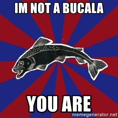 Borderline Blackfish - IM NOT A BUCALA  YOU ARE