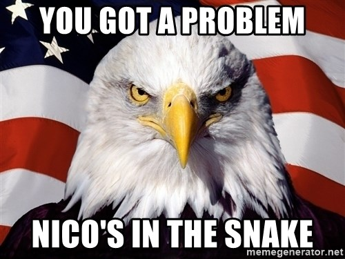 Patriotic Eagle - you got a problem nico's in the snake