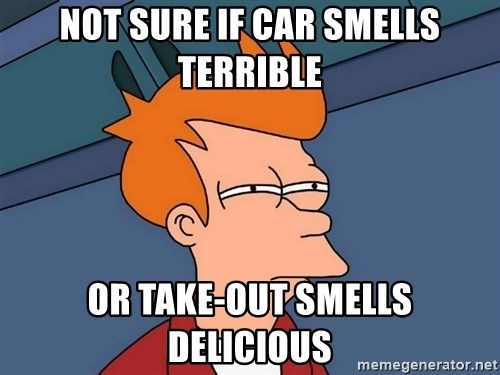 Futurama Fry - not sure if car smells terrible or take-out smells delicious