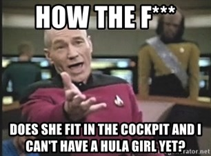 Picard Wtf - how the F*** does she fit in the cockpit and i can't have a hula girl yet?