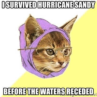 Hipster Kitty - I survived Hurricane sandy Before the waters receded
