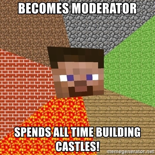Minecraft Guy - Becomes Moderator Spends all time building castles!