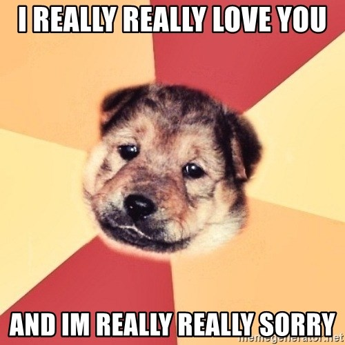 Typical Puppy - i really really love you and im really really sorry