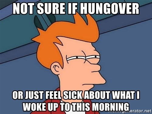 Futurama Fry - not sure if hungover or just feel sick about what I woke up to this morning