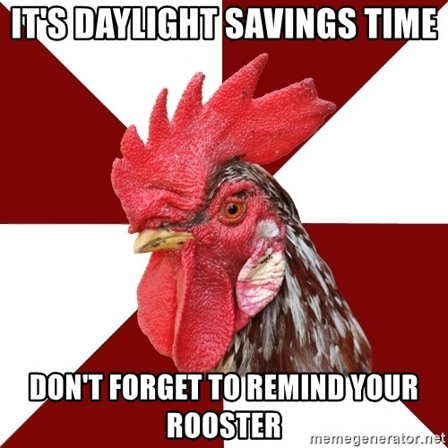Roleplaying Rooster - It's daylight savings time don't forget to remind your rooster