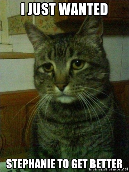 Depressed cat 2 - I JUST WANTED STEPHANIE TO GET BETTER