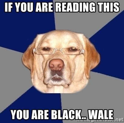 Racist Dog - If you are reading this  you are black.. wale
