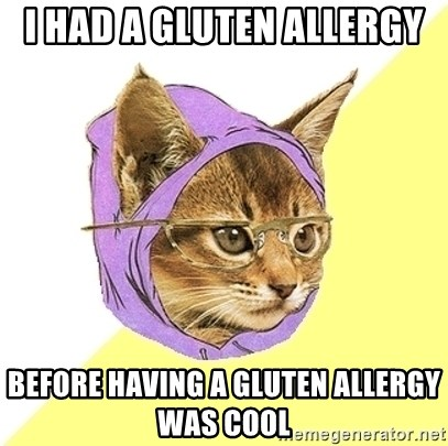 Hipster Kitty - I had a Gluten Allergy  before having a gluten allergy was cool