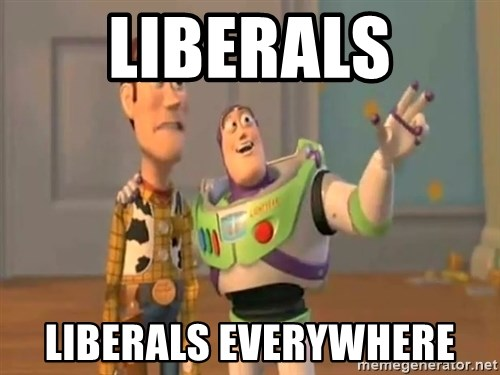 X, X Everywhere  - Liberals Liberals Everywhere