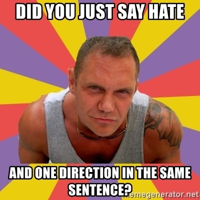 NACHO VIDAL MEME - DID YOU JUST SAY HATE AND ONE DIRECTION IN THE SAME SENTENCE?