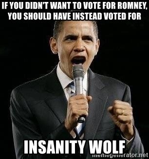 Expressive Obama - if you didn't want to vote for romney, you should have instead voted for insanity wolf