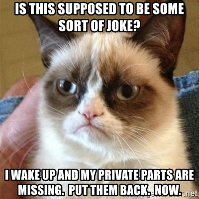 Grumpy Cat  - is this supposed to be some sort of joke? I wake up and my private parts are missing.  Put them back.  Now.