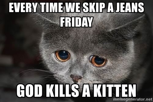 Sadcat - Every time we skip a jeans friday god kills a kitten