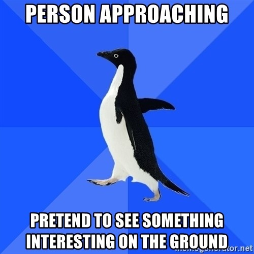 Socially Awkward Penguin - person approaching pretend to see something interesting on the ground