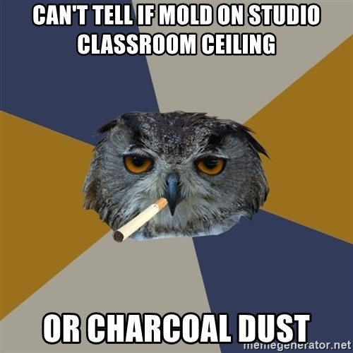 Art Student Owl - Can't tell if mold on studio classroom ceiling or charcoal dust
