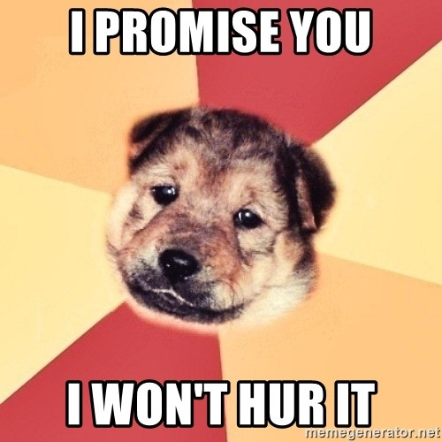 Typical Puppy - i promise you i won't hur it