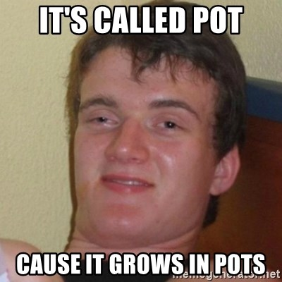 Really Stoned Guy - it's called pot cause it grows in pots