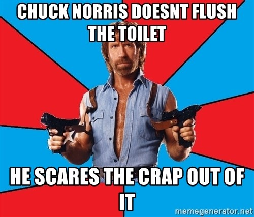 Chuck Norris  - chuck norris doesnt flush the toilet he scares the crap out of it