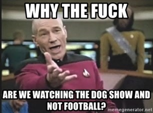 Picard Wtf - Why the fuck are we watching the dog show and not football?