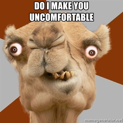 Crazy Camel lol - DO I MAKE YOU UNCOMFORTABLE
