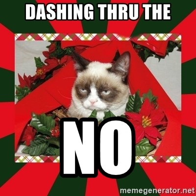 GRUMPY CAT ON CHRISTMAS - Dashing thru the No