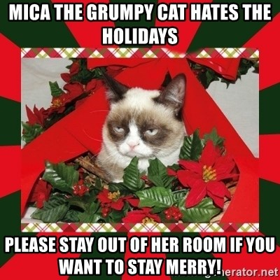 GRUMPY CAT ON CHRISTMAS - Mica the grumpy cat hates the holidays please stay out of her room if you want to stay merry!