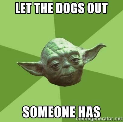 Advice Yoda Gives - let the dogs out someone has