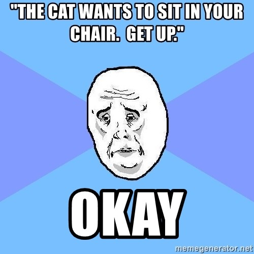 "Okay Guy - ""the cat wants to sit in your chair.  get up."" okay"