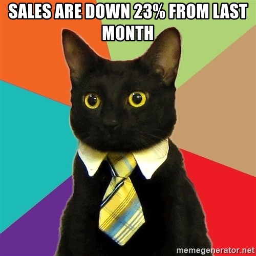 Business Cat - sales are down 23% from last month