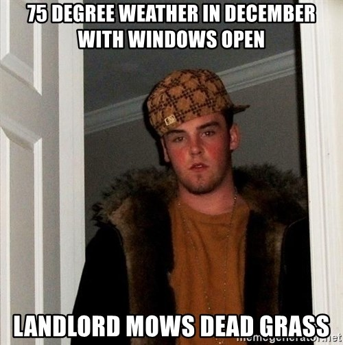 Scumbag Steve - 75 degree weather in december with windows open landlord mows dead grass