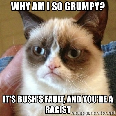Grumpy Cat  - why am I so grumpy? it's bush's fault, and you're a racist