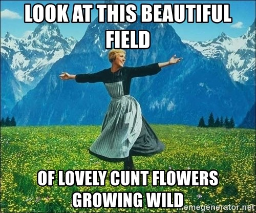 Look at all the things - look at this beautiful field of lovely cunt flowers growing wild