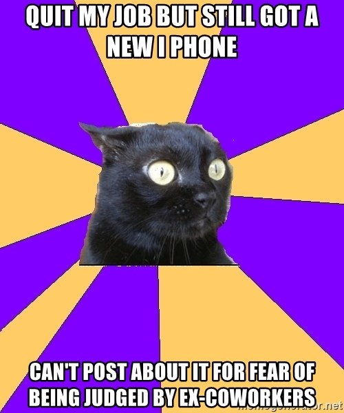 Anxiety Cat - quit my job but still got a new i phone can't post about it for fear of being judged by ex-coworkers