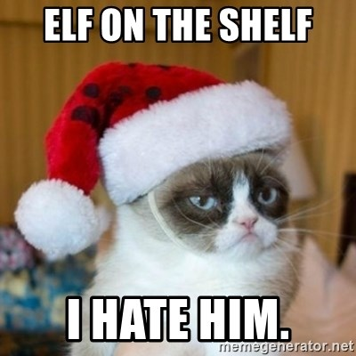 Grumpy Cat Santa Hat - Elf on the shelf I hate him.