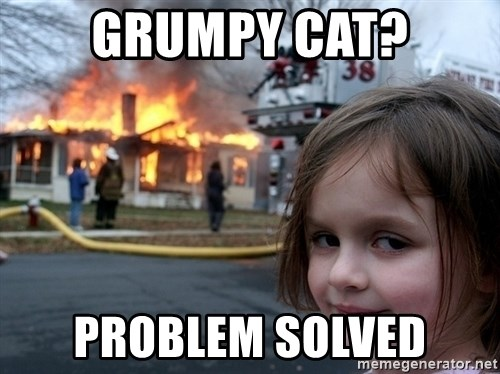 Disaster Girl - GRUMPY CAT? PROBLEM SOLVED