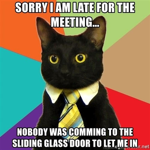 Business Cat - sorry I am late for the meeting... nobody was comming to the sliding glass door to let me in