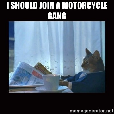 i should buy a boat cat - i should join a motorcycle gang