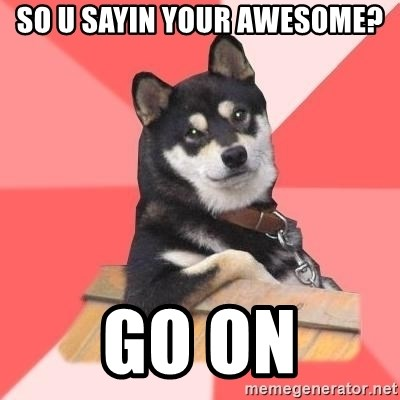 Cool Dog - so u sayin your awesome? go on