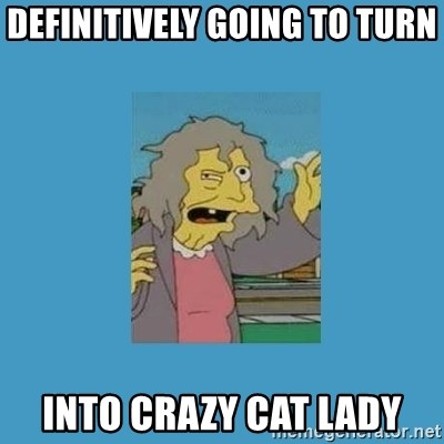 crazy cat lady simpsons - Definitively going to turn into crazy cat lady