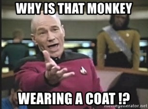 Picard Wtf - WHY IS THAT MONKEY WEARING A COAT !?