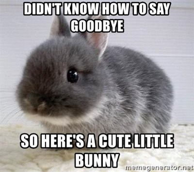 ADHD Bunny - Didn't know how to say goodbye So here's a cute little bunny