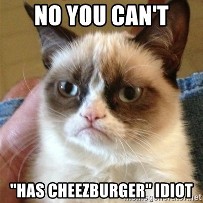 "Grumpy Cat  - No you can't ""HAS CHEEZBURGER"" idiot"